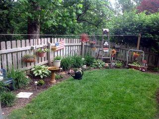 Backyard-001